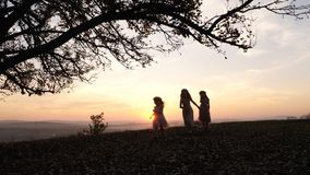 Silhouettes of happy family walking in the meadow near a big tree during sunset. Royalty Free Stock Images