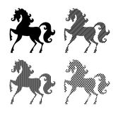Silhouettes of horse Royalty Free Stock Photo
