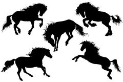 Silhouettes of horses vector illustration 2 Stock Image