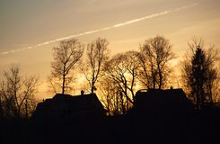 Silhouettes of houses and trees Stock Photo