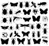 Silhouettes of insects Stock Photo