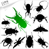 Vector silhouettes of insects - beetle. Insect-Mantis Silhouette.The various postures of the beetles. Increased by Adobe Illustrator EPS Vector Format Royalty Free Stock Photos