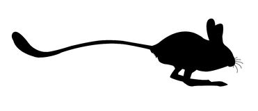 Silhouettes of the jerboa Stock Photography