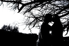 Silhouettes of kissing couple outdoor in the park Royalty Free Stock Photo