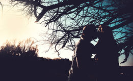 Silhouettes of kissing couple outdoor in the park. Under the tree Stock Images