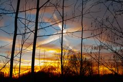 Silhouettes of a leafless tree branches on colorful sunset and cloudy blue sky with plane trail as a backgrond. Autumn in Finland.  royalty free stock images