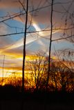 Silhouettes of a leafless tree branches on colorful sunset and cloudy blue sky with plane trail as a backgrond. Autumn in Finland.  stock image