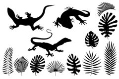 Silhouettes of lizards, gecko and tropical leaves vector illustration