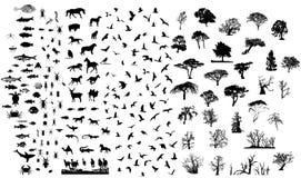 silhouettes mélangées de positionnement Photos libres de droits