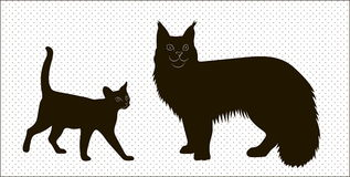 Silhouettes of Maine Coon cats and the Abyssinian Royalty Free Stock Photography