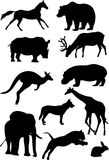 Silhouettes of mammal Royalty Free Stock Images