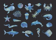 Silhouettes of marine life Stock Photography