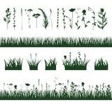 Silhouettes meadow grass Stock Photos