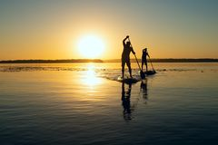 Silhouettes of men, friends paddling on a SUP boards. In a large river during sunrise. Stand up paddle boarding - awesome active recreation in nature. Backlight stock photos