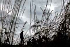Silhouettes in nature. Silhouette in nature trough the grass Royalty Free Stock Images