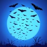 Silhouettes noires de battes sur la grande lune bleue à l'obscurité Photographie stock