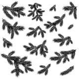 Silhouettes noires impeccables de branches d'arbre de Noël Photographie stock