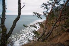Silhouettes nuageuses et foncées des arbres avec les feuilles vertes sur la colline, mer bleue avec de petits glaçons blancs Photo stock