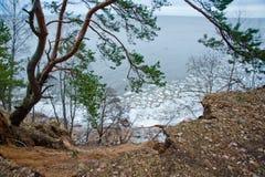 Silhouettes nuageuses et foncées des arbres avec les feuilles vertes sur la colline, mer bleue avec de petits glaçons blancs Images stock