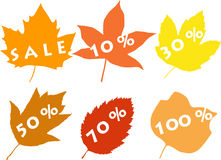Silhouettes Of Leaves, Sale Stock Photography