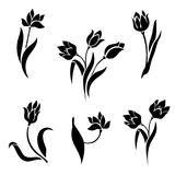 Silhouettes Of Tulips On A White Background. Stock Photography