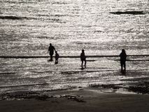 Silhouettes på seashoren Arkivfoton