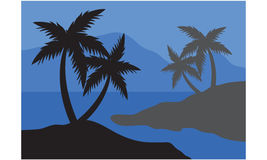Silhouettes of palm at the night Stock Photo