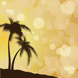 Silhouettes of palm trees against the background of solar patche. S of light and the sky. Vector illustration Stock Images
