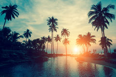 Silhouettes of palm trees against the sky during tropical sea sunset. Royalty Free Stock Photos