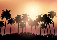 Palm tree silhouettes against a sunset sky. Silhouettes of palm trees against a sunset sky Royalty Free Stock Photos