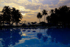 Silhouettes of palm trees and pool on sunset Stock Images