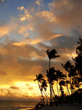 Silhouettes of palm trees on a tropical beach. At sunrise Stock Photos