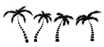 Silhouettes of palm trees, vector Stock Photos