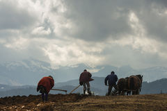 Silhouettes of peasants farming up the mountain Stock Images