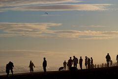 Silhouettes of people on a beach. Silhouettes of a crowd of people on a beach at sunset Royalty Free Stock Images