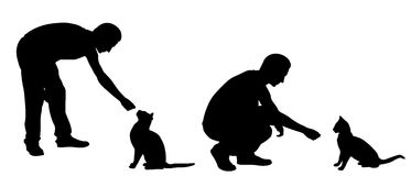 Silhouettes of people feeding cats Royalty Free Stock Photo