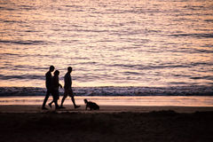 Silhouettes of people walking with a dog on a beach Stock Photography