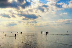 Silhouettes of people walking in the sea after the tide Royalty Free Stock Photos