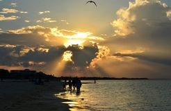Silhouettes of people walking on the shore. Dramatic sunset over a tropical beach in the Caribbean Cayo Coco, Cuba. Silhouettes of people walking on the shore royalty free stock photo