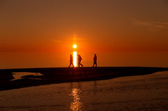 Silhouettes of persons on a beach. Silhouettes of an unidentified persons walking on the beach at sunset with the sun setting as background Stock Photography