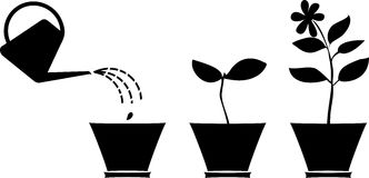 Silhouettes of plants in the flowerpot Stock Image