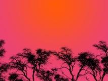 Silhouettes pourprées de ciel Photos stock