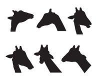 Silhouettes réglées de girafe Photographie stock