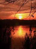 Vertical shot of a sunset above water with trees without foliage in foreground stock photography