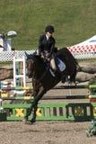 silhouettes rid- hästhästar för dressage som hoppar poloryttare, sportvektorn Royaltyfria Bilder