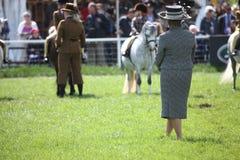 silhouettes rid- hästhästar för dressage som hoppar poloryttare, sportvektorn Arkivfoto