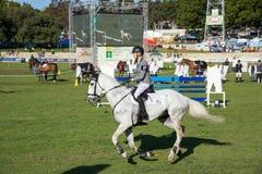 silhouettes rid- hästhästar för dressage som hoppar poloryttare, sportvektorn Royaltyfri Fotografi