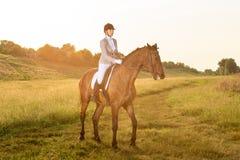 silhouettes rid- hästhästar för dressage som hoppar poloryttare, sportvektorn Ridninghäst för ung kvinna på för provsol för dress Royaltyfria Bilder