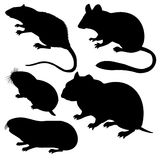 Silhouettes rodent Royalty Free Stock Image