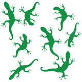 Silhouettes of salamander Royalty Free Stock Image